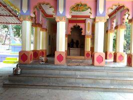 Shri Wagheshwar Temple