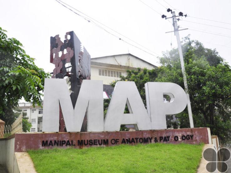 Museum Of Anatomy Pathology In Manipal Karnataka India Reviews