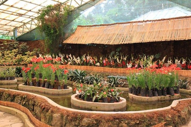 Flower Exhibition Centre 2019, #13 top things to do in