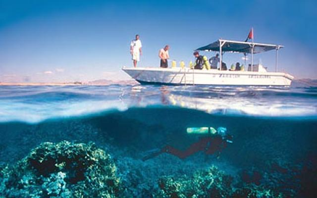 Scuba diving fun under waters 2019 1 top things to do for Aqaba dive